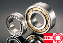 IBC圆柱滚子轴承 Cylindrical Roller Bearings